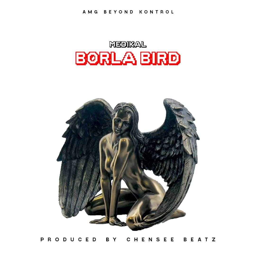 Download Medikal Borla Bird