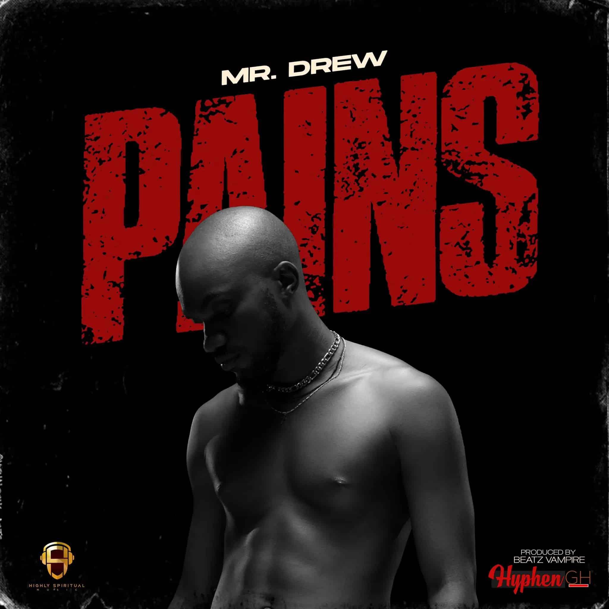 Mr Drew Pains mp3 download